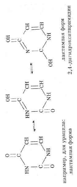 Лактамная форма оксоформа или nh форма